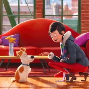 Pets Universal Film (1)
